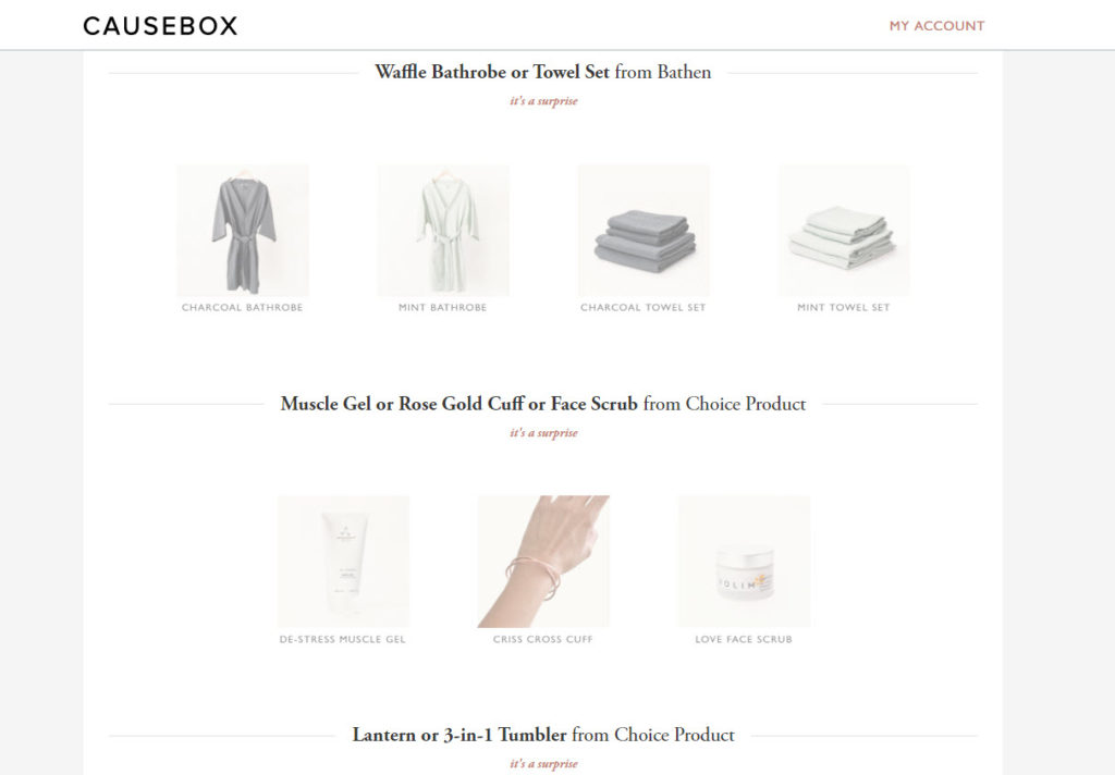causebox customization overview - Subscription Box Expert